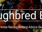 Thoroughbred Betting – Horse Racing Tips