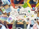 Marketing business ideas