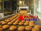 Significant Growth In Bakery Processing Equipment Market By 2025